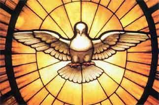 stained glass window of a dove as the Holy Spirirt
